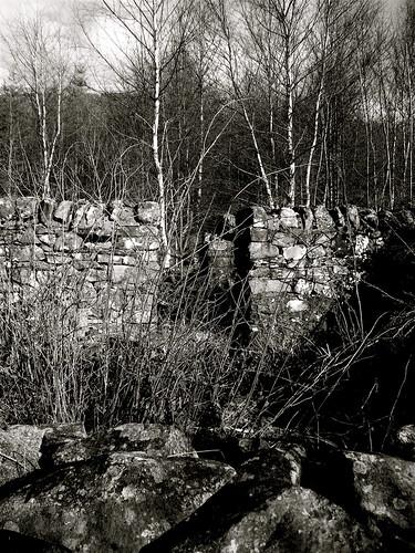Forgotten Village 3
