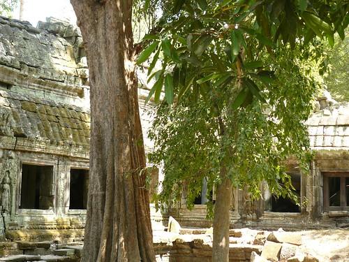 Cambodge - Angkor #88