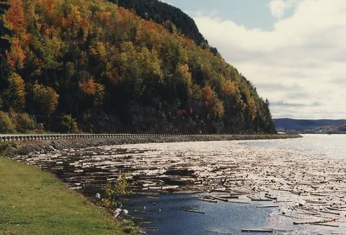 La rivière Saint-Maurice à lépoque du flottage de billots. (Source: mario_groleau sur flickr.com)