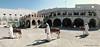 Doha,Qatar,Sogh Vaghef (Fariborz  Alagheband) Tags: doha qatar iranianbazzar soghvaghef