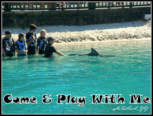 Sea World: Come & Play With Me