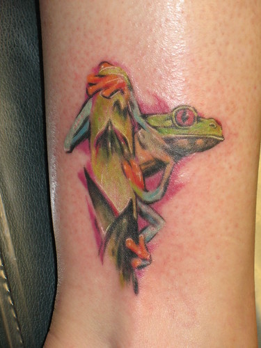 Size:500x375 - 34k: Red Eye Tree Frog Tattoos