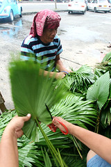 anahaw leaves (Keith Bacongco) Tags: flowers roses day orchids market davao allsaints vendors anahaw allsouls agadao