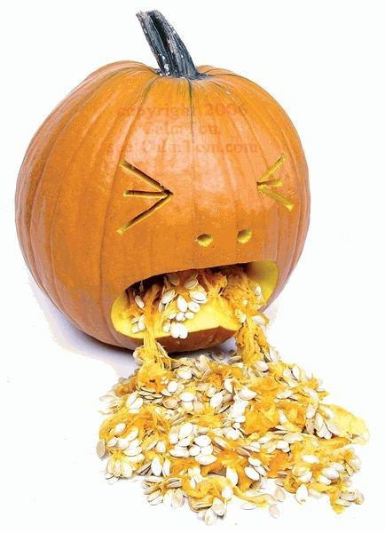 bleccchhh pumpkin.jpg