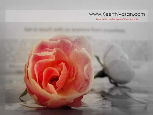 www.Keerthivasan.com