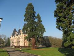 Chateau & parc