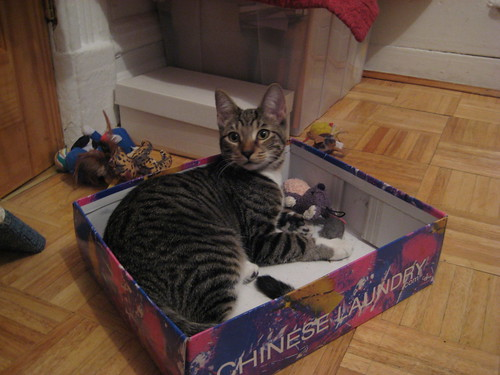 buster's box
