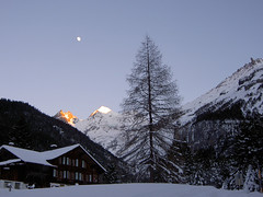 wintertree (eyeflyer) Tags: winter moon snow mountains evening explore kandersteg bluemlisalp abigfave eyeflyer