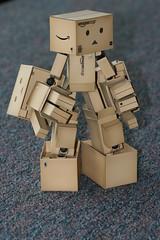 Must crush things! (katsuboy) Tags: japan toys manga cardboard figures cardboardbox miura yotsubato yotsuba danbo revoltech bfigure danboard danbostator