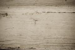 freeeeeee rocks! (-Cortni Marie-) Tags: wood old texture free cracks
