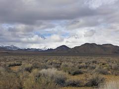 SierrasOutsideBishop7 (merhawk) Tags: winter mountains outdoors easternsierras