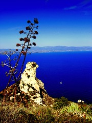 Sella del diavolo (sardiniaman) Tags: sardegna blue panorama costa beach water beautiful amazing nice fantastic mare estate shot blu awesome loveit cielo agave lovely acqua spiaggia magnificent cagliari poetto panoramico fantastica magnifica fascino profondo affascinante selladeldiavolo migical envyofflickr theunforgettablepictures theunforgettablepicture platinumheartaward top25blue cagliarimonumentiaperti