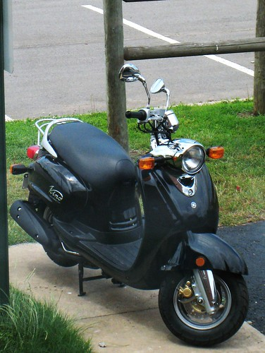 The New Scooter