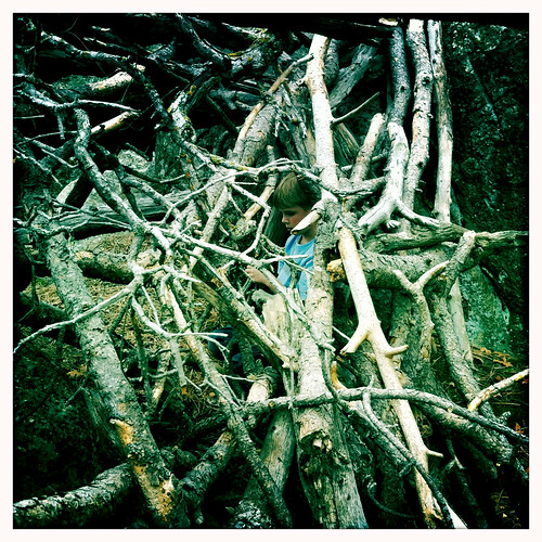 fort of sticks