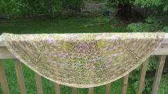 camoshawl post