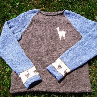 Ravelry: Super Easy Seamless Knit Raglan Sweater Pattern Generator pattern by...