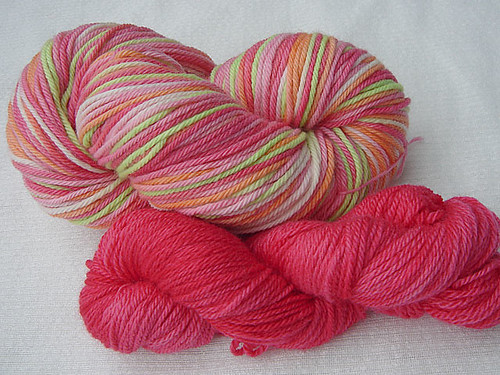 """sherbet"" colorway on organic merino"