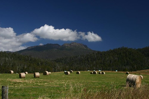 Great Tassie country side...