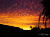 Cielo en llamas / Sky in flames (Claudio.Ar) Tags: sunset santafe nature topf25 argentina atardecer topf50 topf75 sony cielo apex bec magical soe dsc h9 cubism themoulinrouge naturesfinest thebigone blueribbonwinner vob flickrsbest totalphoto passionphotography golddragon naturesgallery mywinners abigfave royalgroup shieldofexcellence anawesomeshot cameradeourobrasil impressedbeauty diamondclassphotographer flickrdiamond citrit ysplix allxpressus theunforgettablepictures brillianteyejewel overtheexcellence naturessilhouettes betterthangood proudshopper theperfectphotographer thegardenofzen coloursplosion thegoldendreams goldstaraward life~asiseeit academyofphotographyparadiso multimegashot colourvisions sonyh9gallery naturalezasky claudioar claudiomufarrege phvalue daarklands