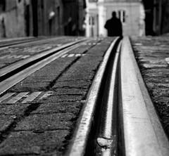 Down (Sandra_R) Tags: city bw white black macro portugal closeup outdoors photography blackwhite exterior lisboa lisbon details urbanscenes lx chiado bica elevadordabica