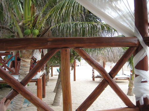 View from the beach bed (by bandini66)