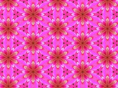 Pink Petal Bursts in Layers 12.1 (Crystal Writer) Tags: flowers original light flower color colour colors circle tile stars creativity star design colorful colours bright image crystal unique circles creative multicoloured kaleidoscope mandala ring christian originals rings creation tiles kaleidescope designs writer write create colourful multicolored honeycomb tessellation tessellations hex lattice kscope kaleidoscopes mandalas bursts 10millionphotos kscopes kaleidoscopesonly crystalwriter christianwriter allkscopes