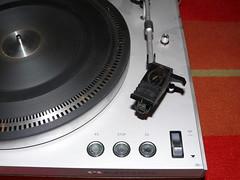 P1050135.JPG