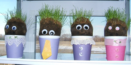 Grasshead Family--9 days