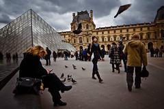 Louvre birds