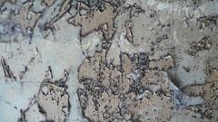 peeling paint (Mandy Kippax) Tags: texture high ace lincolnshire dishes raf stenigot