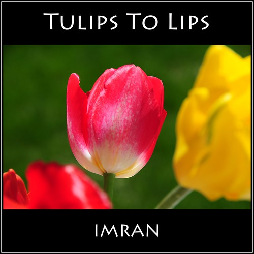 Bring Kissable Tulips To Lips - IMRAN™ — 500+ Views! by ImranAnwar
