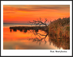 Sunset II (avirus) Tags: sunset red sea tree beach grass duck northcarolina frame obx holidaysvacanzeurlaub