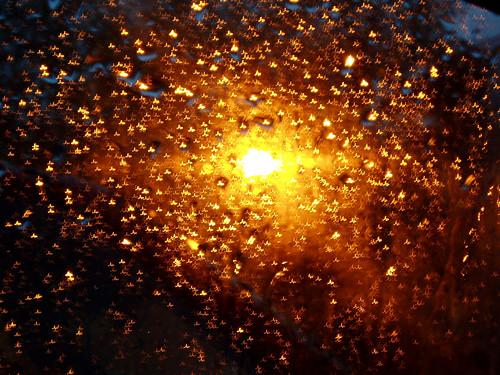 rain twinkle