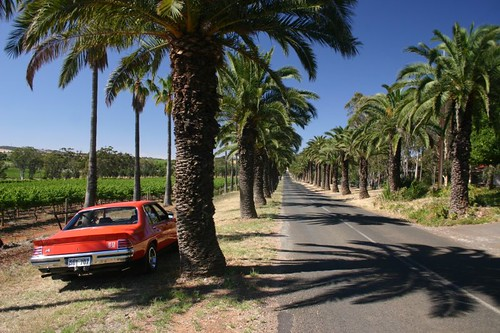 My host Ians flashy 1974 vintage Holden Monaro V8. The perfect way to cruise around the Barossa Valley...