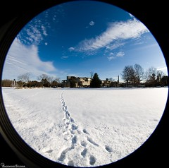 December 15, 2007: Tracks (plastereddragon) Tags: sky snow clouds tracks footprints fisheye smu umd cirrus commonplaces umassdartmouth eos5d northdartmouthma sigma8mm35fisheye southeasternmassachusettsuniversity