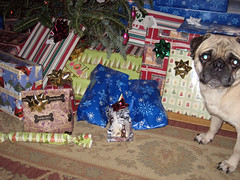 norman checking out presents