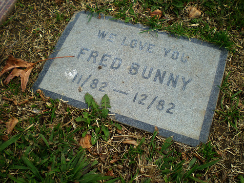 We Love You Fred Bunny