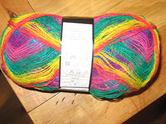 Noro Sock Yarn 1