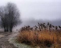November Fog (Krogen) Tags: november winter norway landscape norge vinter bravo searchthebest norwegen noruega scandinavia akershus romerike krogen landskap noorwegen ullensaker skandinavia jessheim blueribbonwinner magicdonkey olympusc7070 nordbytjernet ortoneffect anawesomeshot ultimateshot superbmasterpiece redynamix