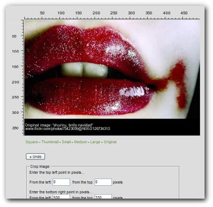 FlickrCC | Busca y edita legalmente las imágenes de Flickr ceslava 0