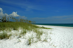 Gulf Dreams (gatorgalpics) Tags: coast warm days best dreaming explore beaches fl emerald portstjoe in of farandawaythebest flickrelite justmyopinion theperfectphotographer flpanhandle thedrivealongus98
