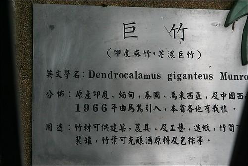 竹崎親水公園16
