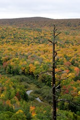 Lookout view (Kristina_5) Tags: statepark trees fall up michigan upperpeninsula snag porcupinemountains