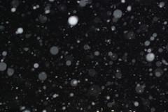 夜雪 (by detch*)