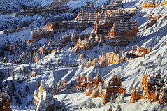 New Snow at Bryce (James Neeley) Tags: winter snow landscape bryce hdr brycenationalpark sunrisepoint 5xp flickr5 jamesneeley