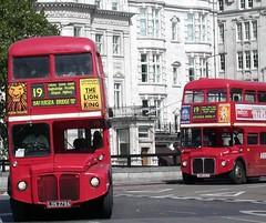 DSCN9834 (Sou'wester) Tags: bus london heritage history buses profile icon historic routemaster lrt lt lineup parkroyal rm londontransport tfl route19 aec prv rml classicbus finalyears rm54 lds279a rm1280 vlt54 280clt