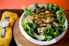Apple Cranberry Salad with Fried Seitan and Almond Dijon Dressing (teenytinyturkey) Tags: apple lunch salad almond dressing cranberry mustard seitan fried creamy chickenish