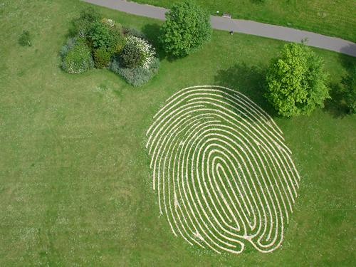 Hove Park maze05384 / aerialphotographyforyou