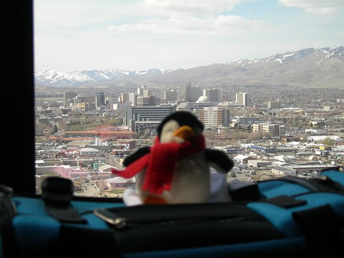 2008-04-02 Penguin in Reno (2)