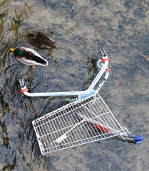 KonsumEnten (**MIKA**) Tags: canon shopping biodiversity g7 avision powershotg7 canonpowershotg7 konumenten mikahuettner
